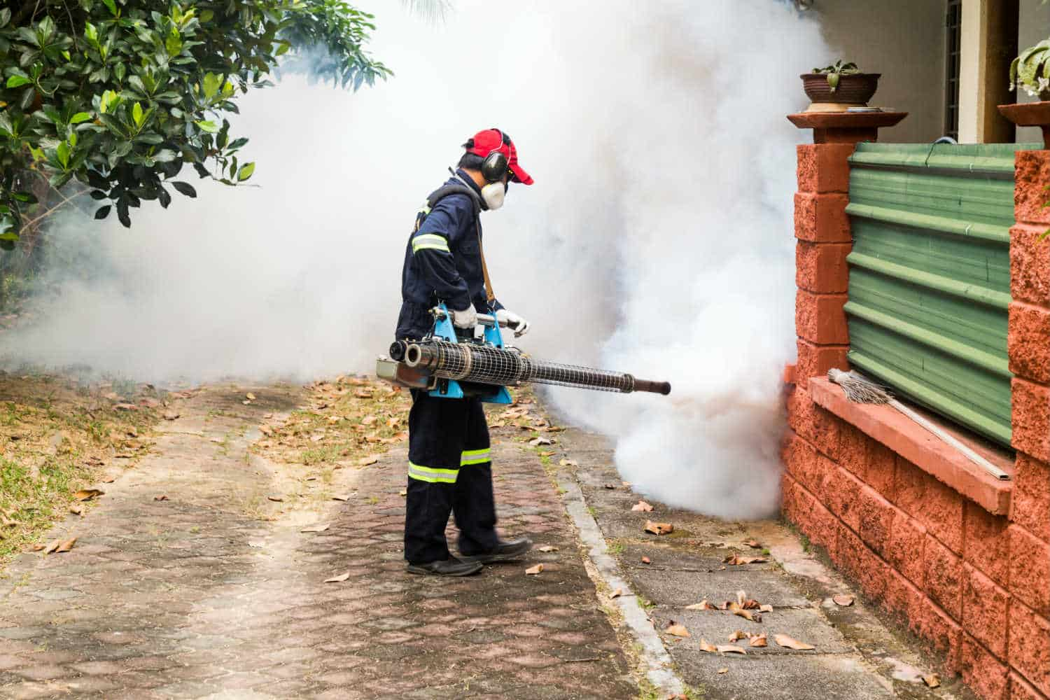 Cheap Pest Control Service For Residential At Smyth Pest Control!